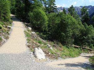 Entsiegelter Forstweg am Berg