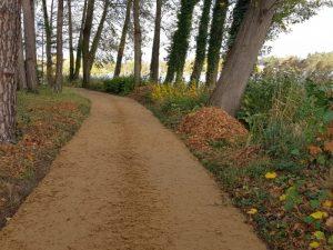 Offenporiger Forstweg