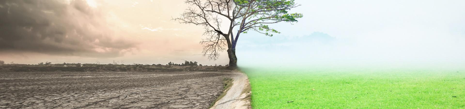 Bodenhilfsstoff für Agrarprofis