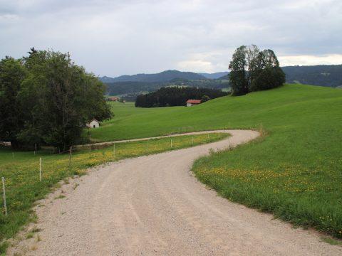 Landwirtschaftlicher Weg in Hanglage