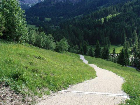 Forstweg am Berg