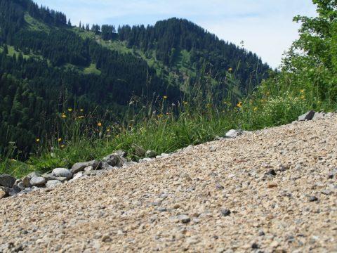 Forstweg am Berg sanieren